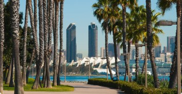 san-diego-with-palm-trees